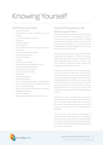 ENTP-The-Visionary3