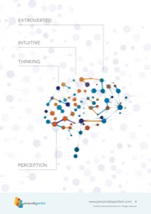 ENTP-The-Visionary4