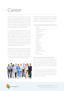 ENTP-The-Visionary5